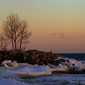 Scarborough Bluffs winter shoot out