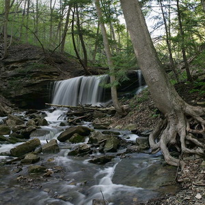 Spencer Gorge Conservation Area landscape photography