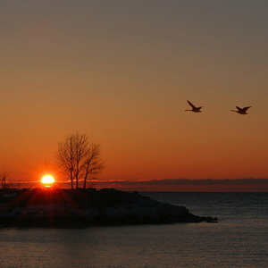 Sunrise at the Scarborough Bluffs